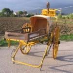 Carro Lettiga
